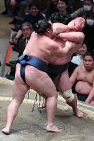 【大相撲初場所四日目】鶴竜が押し出しで妙義龍を降す=東京・両国国技館で2019年1月16日、渡部直樹撮影
