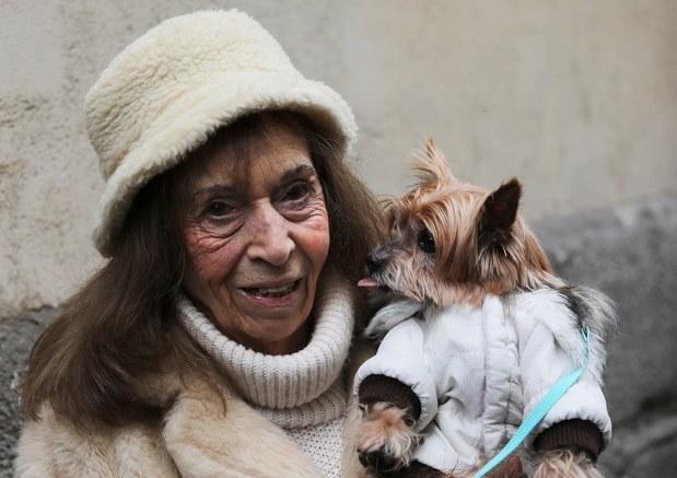 世界の雑記帳:スペインで動物の守護聖人「アントニオ祭」、犬や猫に ...