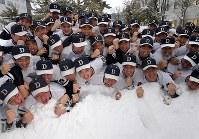 センバツ出場を決め、降り積もった雪の中で喜びを爆発させる喜ぶ札幌第一の選手たち=札幌市豊平区で2019年1月25日午後、竹内幹撮影