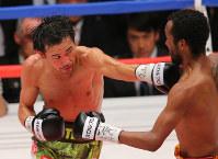 【ボクシング】山中慎介/06年1月にプロデビュー。11年11月に世界王座を獲得し「神の左」と称された左ストレートを武器に防衛を重ねた。戦績は31戦27勝(19KO)2敗2分け=2015年9月22日、長谷川直亮撮影
