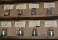 工場に並べられた黒バルサムの原酒を構成する薬草の一部=リガで2018年11月、大前仁撮影