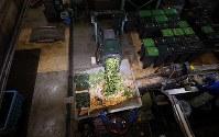 廃棄される恵方巻きの材料と見られる食品廃棄物など=相模原市中央区で2019年2月3日午後0時4分、小川昌宏撮影