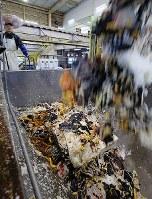 廃棄される恵方巻きの材料と見られる食品廃棄物。海苔巻きのようが見える=相模原市中央区で、小川昌宏撮影