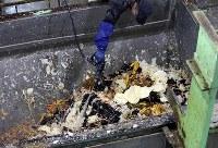 廃棄される恵方巻きの材料と見られる食品廃棄物=相模原市中央区で2019年2月3日午前11時25分、小川昌宏撮影