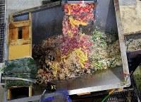 廃棄される恵方巻きの材料と見られる食品廃棄物。卵焼きなどが見える=相模原市中央区で2019年2月3日午後2時8分、小川昌宏撮影
