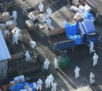 豚コレラが確認された養豚場で、殺処分をする関係者ら=滋賀県近江八幡市で2019年2月6日午後3時37分、本社ヘリから望月亮一撮影
