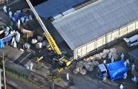 豚コレラが確認された養豚場で殺処分の作業をする関係者ら=滋賀県近江八幡市で2019年2月6日午後3時27分、本社ヘリから望月亮一撮影