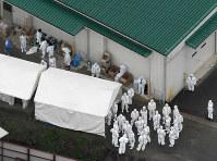豚コレラが確認された養豚場で防疫作業の準備をする関係者ら=滋賀県近江八幡市で2019年2月6日午前10時51分、本社ヘリから望月亮一撮影