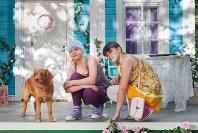 「オンネリとアンネリと ひみつのさくせん」の一場面(c)Zodiak Finland Oy 2017. All rights reserved.