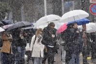 雪の中、信号を待つ人たち=東京都渋谷区で2019年2月9日午前10時18分、藤井達也撮影