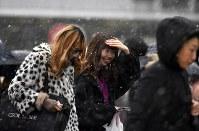 雪が降る中、交差点を渡る人たち=東京都渋谷区で2019年2月9日午前10時14分、藤井達也撮影