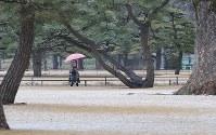 うっすらと雪が積もった皇居前の広場=東京都千代田区で2019年2月9日午後0時1分、長谷川直亮撮影