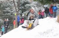 わんぱく雪まつりの会場で、山形から運ばれた雪を使ってそり遊びをする子どもたち。奧はスカイツリー=東京都墨田区で2019年2月9日、日報連会員の田村喜六さん撮影