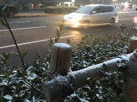 明け方から降り始めた雪が街路樹にうっすらと積もる様子もみられた=東京都千代田区で2019年2月9日、曽根田和久撮影