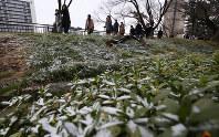 うっすらと雪が積もる中、大学入試の会場に向かう受験生ら=東京都千代田区で2019年2月9日、長谷川直亮撮影