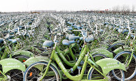 見渡す限り廃棄されたシェア自転車で埋まる自転車の「墓場」=中国・天津市近郊で2019年1月29日、赤間清広撮影