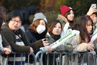 沿道から熱い声援を送る人たち=北九州市小倉北区で2019年2月17日午前8時33分、上入来尚撮影