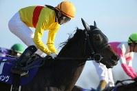 JRA所属の女性騎手として初めてG1レースに騎乗し、コパノキッキングで5着となった藤田菜七子騎手=東京競馬場で2019年2月17日午後3時43分、宮武祐希撮影