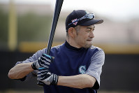 Seattle Mariners' Ichiro Suzuki waits to take batting practice during spring training baseball practice on Feb. 16, 2019, in Peoria, Ariz. (AP Photo/Charlie Riedel)