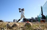 打撃練習に励む石岡一の選手たち=茨城県石岡市で2019年2月2日、宮武祐希撮影
