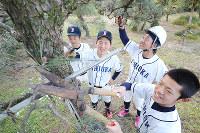 実習用の松の木を剪定する石岡一の選手たち=茨城県石岡市で2019年2月2日、宮武祐希撮影