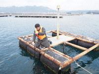 海中の水温を測るセンサーの状態をいかだの上で確認するシャープの社員=広島県江田島市で2019年2月21日午後1時ごろ、加藤美穂子撮影