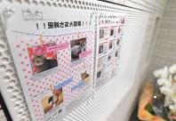 マンションの共用部分には、保護猫の情報などを掲載する掲示板も設置されている=福岡市早良区で2019年3月4日、徳野仁子撮影