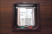 猫が出入りするためのキャットドア=福岡市早良区で2019年3月4日、徳野仁子撮影