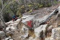 六甲山にある芦屋ロックガーデン。本格的な岩登りだけでなく、一般登山者も鎖を頼りに登るルートがある=柳楽未来撮影
