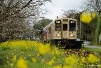 田園シンフォニー=くま川鉄道提供