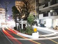 クスノキやツバキなどが植えられた土地を囲むように道路が整備され、車はその形に添って進む=大阪市中央区谷町7で、小出洋平撮影