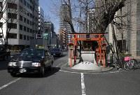 車線を区切る白線がイチョウを避けてひかれている=大阪市北区野崎町8で、小出洋平撮影