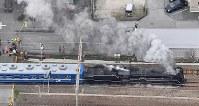 「SL北びわこ号」として、激しく煙を上げて疾走するD51形蒸気機関車=滋賀県長浜市で2019年3月10日午前10時32分、本社ヘリから大西達也撮影
