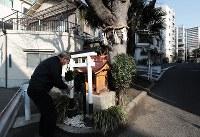 社に榊を供える藤井義隆さん。3年に1度の枝切りの費用は、住民の寄付などでまかなう=大阪市中央区玉造で、小出洋平撮影