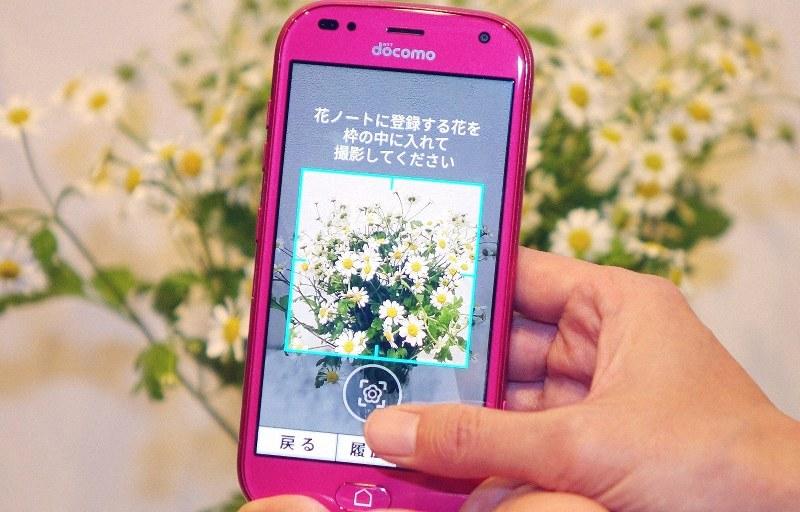 NTTドコモの「らくらくスマートフォン ミー」。花の種類を識別する機能を搭載