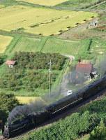 JR西日本:田んぼアートの近くを走る試運転のSLやまぐち号=津和野町中座で2018年9月22日午後3時57分、竹内之浩撮影