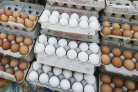In this May 14, 2008 file photo, cartons of eggs are displayed for sale in the Union Square green market in New York. (AP Photo/Mark Lennihan)