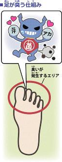 足の臭いの仕組み