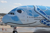 ハワイのウミガメをデザインした全日空のA380=成田空港で2019年3月21日午後2時14分、中村宰和撮影