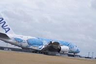 着陸した全日空のエアバスA380。ハワイのウミガメの親子をデザインしている=成田空港で2019年3月21日、中村宰和撮影