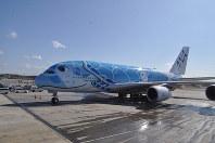 ハワイのウミガメをデザインした全日空のA380=成田空港で2019年3月21日、中村宰和撮影