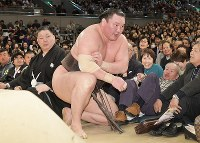 下手投げで鶴竜を破り、土俵下で右腕をかばいながら立ち上がる白鵬=エディオンアリーナ大阪で2019年3月24日、平川義之撮影