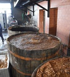 発酵させているプラム。ツイカの原料となるルーマニア北西部メディエシュアウリト村で2019年1月21日、三木幸治撮影