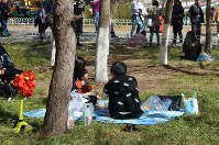 シートを広げてくつろぐ日本式の花見スタイルもちらほら=北京市の玉淵潭公園で25日、浦松丈二撮影