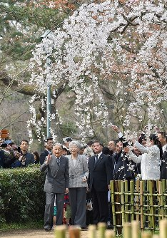京都御苑の桜を観賞される天皇、皇后両陛下=京都市上京区で2019年3月27日午前、川平愛撮影