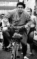 「けいこは自転車に乗って」の双羽黒=1986年9月3日撮影