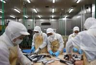 水産加工場で働くインドネシアの実習生たち=宮城県塩釜市の「ぜんぎょれん食品」で2019年1月28日、久保玲撮影