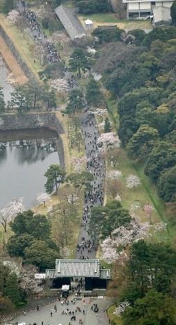 大勢の人が訪れた皇居・乾通りの一般公開=東京都千代田区で2019年3月30日午前10時17分、本社ヘリから尾籠章裕撮影