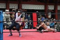 神田明神の境内にリングを設置して行われた奉納プロレス=東京都千代田区で2019年3月30日、山本晋撮影