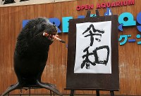 Leo the sea lion poses for a photo with his calligraphy work of the new era name